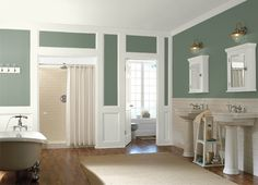 This is the project I created on Behr.com. I used these colors: SUMMER GREEN(PPU11-11),SCOTLAND ROAD(450F-4),AMAZON MOSS(450F-5),BASIC KHAKI(HDC-NT-09),VERMONT CREAM(W-B-400),DARK PEWTER(PPU18-4),SILVER SCREEN(770E-2),IGLOO(760E-1),