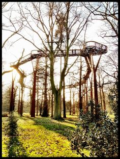 Skywalk, Kew Gardens, London