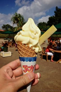 Pineapple Whip dessert only found at the Dole Plantation on Oahu and next to the Tiki Room at Disneyland