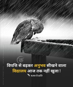 Life Quotes Pictures, Hindi Quotes On Life, Inspirational Quotes Pictures, Motivational Quotes, Qoutes, True Feelings Quotes, Good Thoughts Quotes, Reality Quotes, Hindi Words