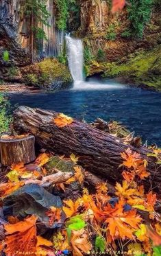 56 Trendy Nature Photography Landscape Trees Fall photography nature landscape is part of Autumn scenery - Beautiful Nature Pictures, Beautiful Nature Wallpaper, Nature Photos, Amazing Nature, Beautiful Landscapes, Beautiful World, Beautiful Beautiful, Beautiful Nature Scenes, Amazing Photos