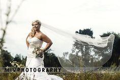Dream Team, Farm Wedding, Charleston, One Shoulder Wedding Dress, Groom, Bride, Couples, Wedding Dresses, Photography