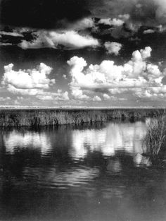 Clouds over the landscape - Everglades, Florida = 1950