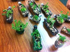 Planters. Gloucestershire Resource Centre http://www.grcltd.org/scrapstore/