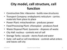 cell as a city - Google keresés