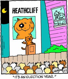 Calvin and hobbes comic strip - mtmts