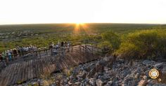 Beautiful 360° Virtual Tour from Damara Mopane Lodge in Namibia