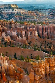 Bryce Canyon National Park is one of the most unique parks in the United States, since it's house to a large focus of vivid hoodoos (stone pillars). The park itself is reasonably little so yo… Sequoia National Park Camping, Grand Canyon National Park, Us National Parks, Banff National Park, Canyon Park, Sequoia Camping, Canyon Colorado, Colorado Hiking, Sierra Nevada