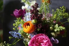 all my favourites together - muscari, ranunculus, peonies,