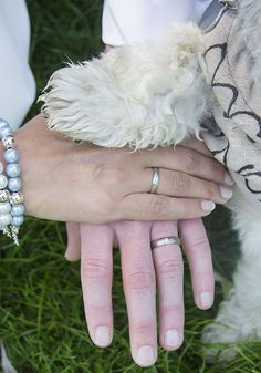www.Trouwgeheimen.nl/trouwfotos-met-hond/ Wedding, Valentines Day Weddings, Weddings, Marriage, Chartreuse Wedding