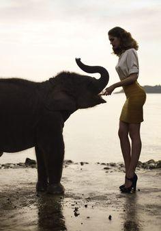 Thaïland x Elephant x Sean & Seng