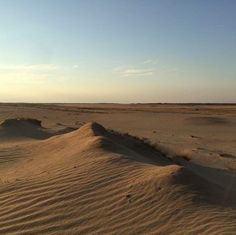 Wir haben eine Wüste in Deutschland?