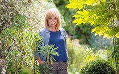 Joanna Lumley: I'm not posh - and I eat like a horse - Telegraph