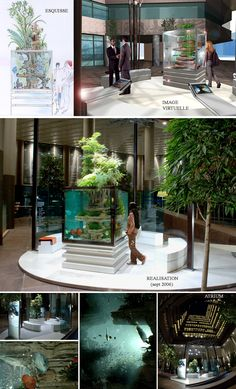 Biological aquariums and landscaped decorations