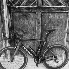 L'amico David dal lago di #Zurigo ci manda la foto della sua @pinarello_official #DogmaF10.  Partecipa anche tu alla nostra rubrica #BikeLife inviaci meravigliosi scatti insieme al tuo mezzo #Pinarello #Trek #Specialized e #Colnago.  #TeamPeruffo  |  #f10naturalbornwinner #pinarellodogma #pinarellodogmaf10 #bikes #bikeshop #bikeporn #bike #bikelovers #bikelover #bikelovers_ig #instabici #instabike #instabicycle #igersciclismo #igerscycling #instabikes #instabikeriders #bicidacorsa #bici…