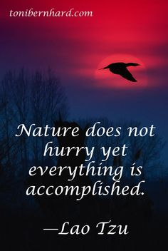 Be like #nature - Lao Tzu #quote