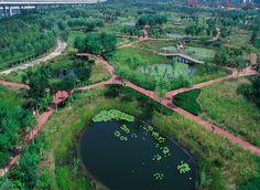 Tianjin Qiaoyuan Wetland Park, Tanjin (CHINA)