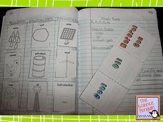 5th Grade Science Notebook Photos