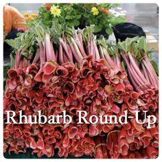 Minnesota Rhubarb Recipe Round-Up
