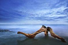 Fotografia Untitled de Mamen Noz na 500px