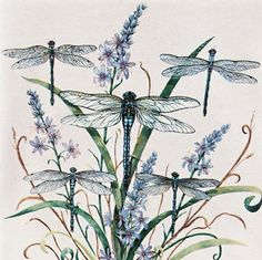 ♈ Dragonfly Versailles ♈ dragonflies in art, photography, jewelry, crafts, home & garden decor - Blue dragonflies print