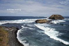 The Nobbies - Phillip Island, Victoria, Australia