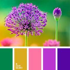 amarillo, amarillo y verde, color amarillo sucio, color violeta, colores cálidos, colores vivos, combinación contrastante, de color púrpura, rosado y violeta, tonos amarillos y verdes, tonos cálidos, verde, verde y rosado, verde y violeta, violeta azulado, violeta vivo.