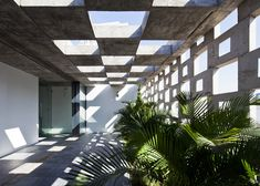 Binh Thanh House by Vo Trong Nghia Architects + Sanuki + Nishizawa architects, Binh Thanh District, Ho Chi Minh City, Vietnam - 2013 Architecture Ombre, Architecture Details, Interior Architecture, Interior And Exterior, Interior Plants, Concrete Block Walls, Outdoor Spaces, Landscape Design, Facade