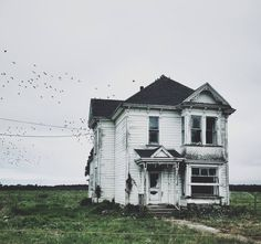 schickjessica: Today in an abandoned house in Ferndale, California. This is really good.