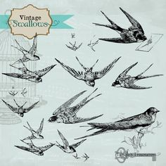 #swallow tattoo inspiration http://tattoo-ideas.us