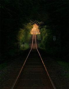 Railroad Tree Tunnel, France