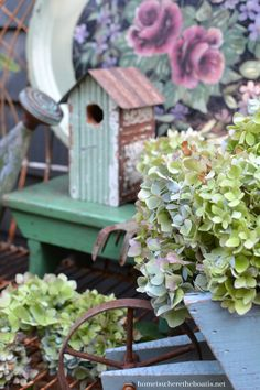 Bench with soft greens and blues of late summer hydrangea blooms in wheelbarrow and watering can | homeiswheretheboatis.net #garden