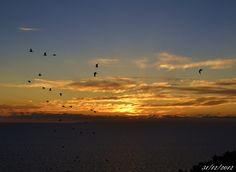 #Tramonto #Sardegna #Sardinia #Sunset