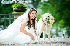 Brautshooting mit Hund #hochzeitsfeier #hochzeitsfoto #bride #schlossgutliebenberg