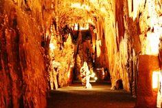 Grand Caverns     5 Grand Caverns Drive     Grottoes, VA  24441           Phone: 540-249-5705     Toll Free:   888-430-CAVE (2283)
