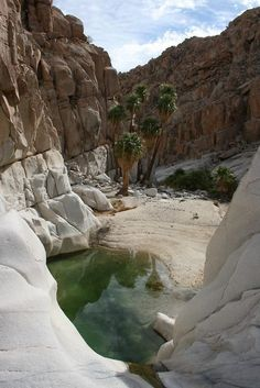 Santa Maria Oasis ~ San Luis Gonzaga in the state of Baja California, Mexico // Mexico-California Road Trip October 2015 Places Around The World, The Places Youll Go, Places To See, Around The Worlds, Beautiful World, Beautiful Places, Amazing Places, San Luis Gonzaga, Baja California Mexico