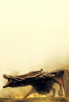 - game of thrones wallpaper iphone Game Of Thrones S7, Drogon Game Of Thrones, Game Of Thrones Facts, Game Of Thrones Dragons, Got Dragons, Game Of Thrones Quotes, Game Of Thrones Funny, Mother Of Dragons, Cersei Lannister