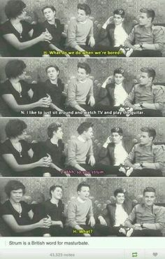Harry's face in the last one.strum in England is slang for masturbate. Zayn looks so freaking pleased with himself. One Direction Humor, One Direction Pictures, I Love One Direction, Funny, Hilarious, 1d And 5sos, Louis Tomlinson, Boy Bands, I Laughed