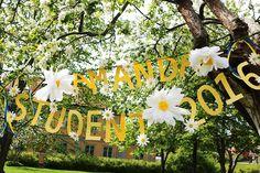 Studentgirlang och pappersblommor - DIY Sweden