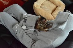 Mewgaroo is a cat hoodie with a kangaroo pouch to enable you to bring your pets wherever you go. It was created by Unihabitat a design brand in Japan for people Sweat Shirt, Crazy Cat Lady, Crazy Cats, Son Chat, Kangaroo Pouch, Cat Sweatshirt, Cat People, Bored Panda, Snuggles