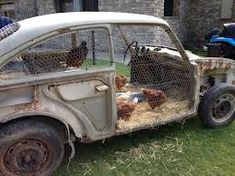 "Okay so, maybe it won't make your ride a sanctuary, but the hens have a retreat of their own. New take on the meaning of ""coupe""..."
