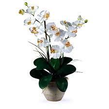 > www.scentimentsflowers.com preferable fresh flower arrangement ideas for…