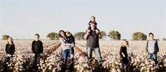 family pictures cotton field - Yahoo Image Search Results