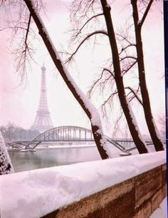 Very Wintry Paris  (I think I could learn to like winter if I were in Paris.)