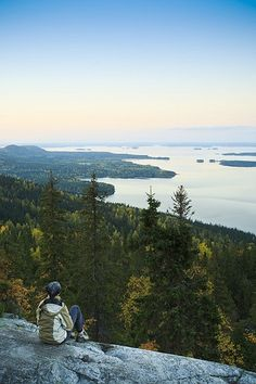 Koli National Park, Finland #Culturetravel