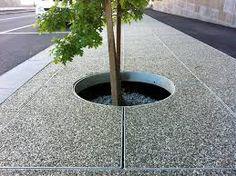 tree grate, australia - Google Search