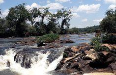 Akwariarz: Przejrzyste wody Ameryki Południowej