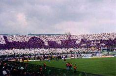 Fiorentina - la curva fiesole