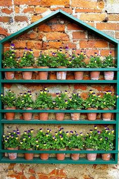 Beautiful house-shaped shelf of pansies in old clay pots. Love this!