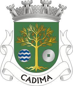 Brasão de armas de Cadima Portugal, Crests, Elmo, Coat Of Arms, Symbols, Gallery, Weapons Guns, Football Squads, Hanging Medals